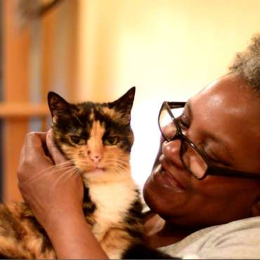 "Coming late 2016 – A short documentary about street cats in the blighted community of Greenville, Jersey City. The film centers on Sharon James, a self-professed ""cat lady"" who currently lives with 8 rescued cats."